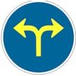 TR-403c Únicas direcciones y sentidos permitidos